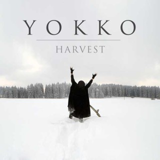 Werbeagentur Bern Blitz & Donner: Cover für YOKKO - Harvest- Single