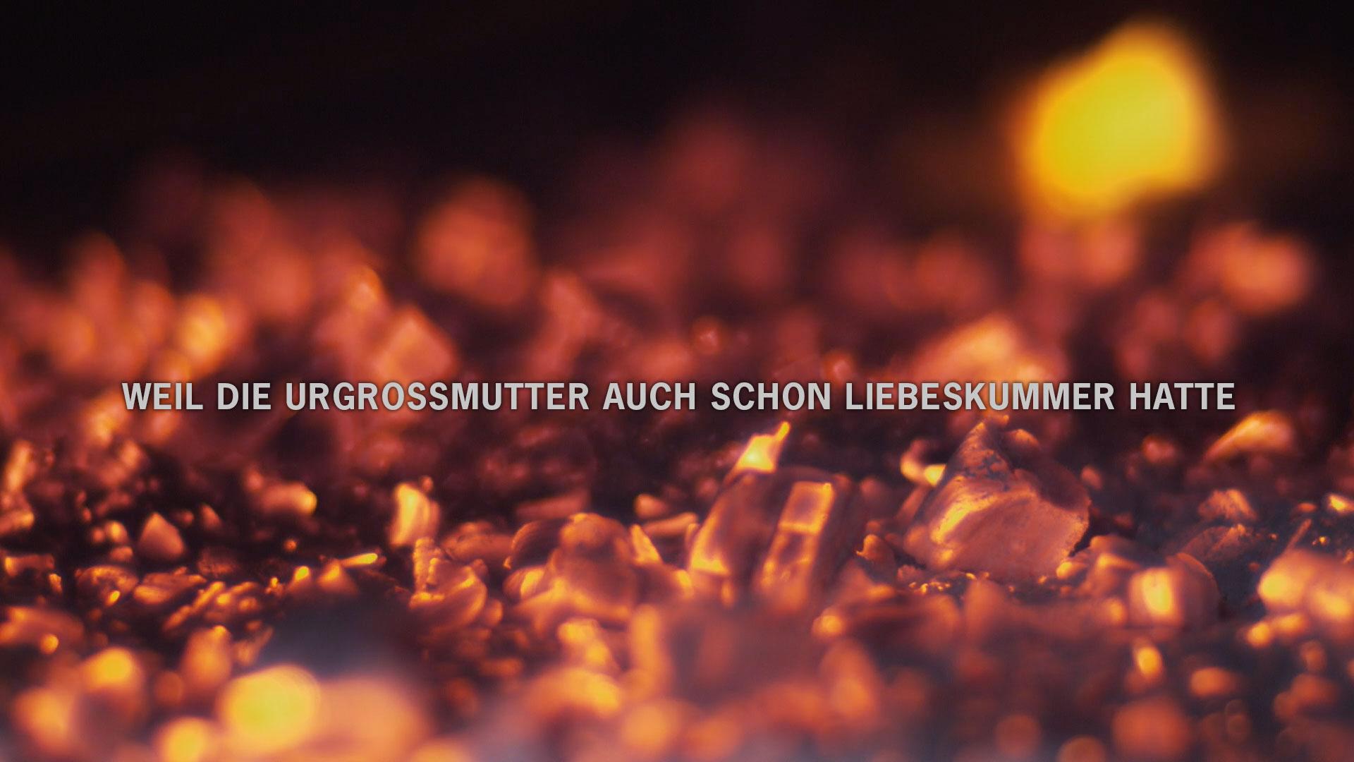 Werbeagentur Bern TV-Kampagne für Freilichtmuseum Ballenberg